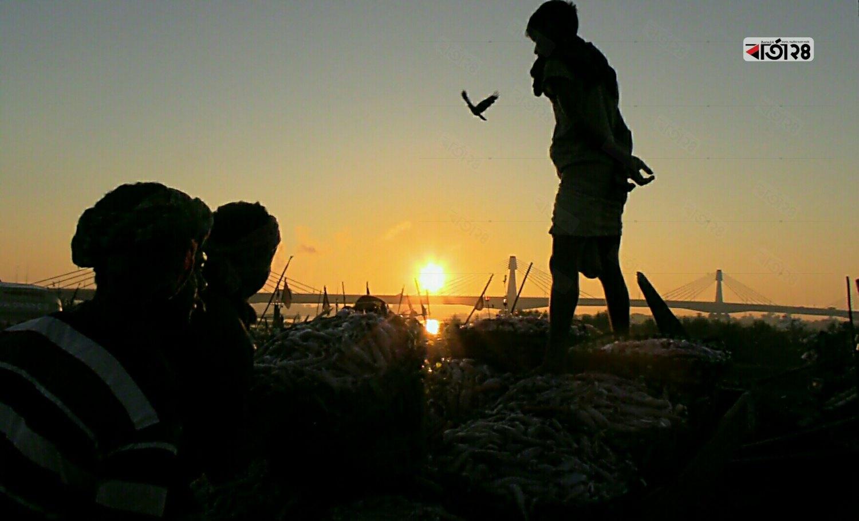নৌকা থেকে নামানো মাছগুলো ভ্যানগাড়ীতে তোলার অপেক্ষায় শ্রমিকের দল ।