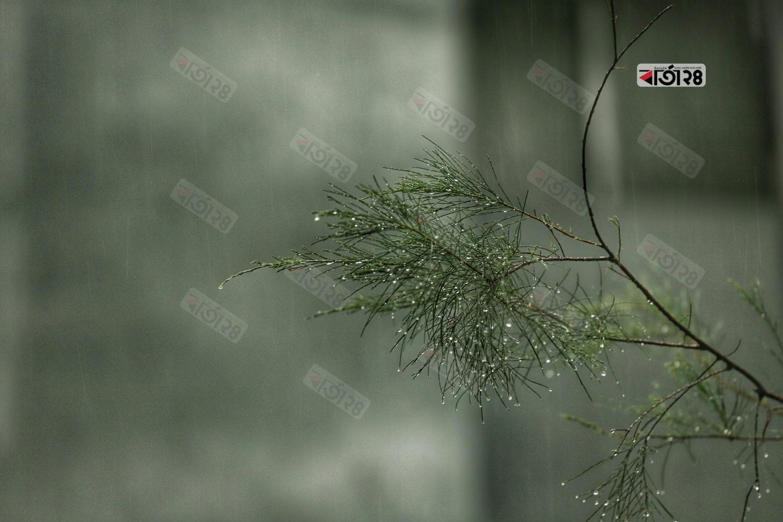 বৈরী আবহাওয়ার কারণে রাজধানীতে সকাল থেকেই থেমে থেমে হচ্ছে বৃষ্টি। ছবি : সুমন শেখ