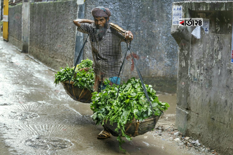মহল্লায় মহল্লায় ফেরি করে বিভিন্ন ধরনের শাক বিক্রি করেন রহিম মিয়া। ছবিটি কমলাপুর এলাকা থেকে তোলা। ছবি : সুমন শেখ