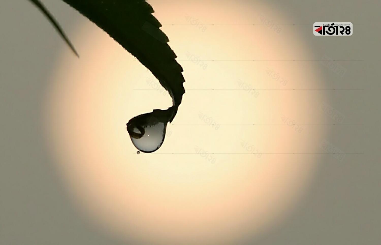 শিশির বিন্দু। ছবি : সুমন শেখ